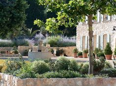 The lovely gardens of Villa Des Pavots in Cote d'Azur, France