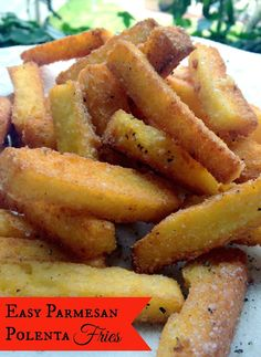 *Rook No. 17: recipes, crafts & whimsies for spreading joy*: Easy & Amazing Parmesan Polenta Fries