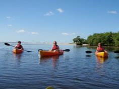 Water sports are wonderful ways to spend your time on a winter vacation. Find out more about area water activites and book your winter holiday with www. Anna Maria Rentals, Anna Maria Island, Anna Marias, Water Activities, Florida Travel, Best Vacations, Water Sports, Kayaking, Places To Go