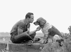 Marlon Brando por Art Shay.  Fotoperiodista nacida en 1922, Se unió a la plana de Life magazine en 1948,Primero como reportera y luego como fotógrafa. se convirtió en fotoperiodista a tiempo completo  a inicios de los cincuenta, colaborando con Time, Life, Fortune, Sports Illustrated y the New York Times Magazine,entre otros medios.