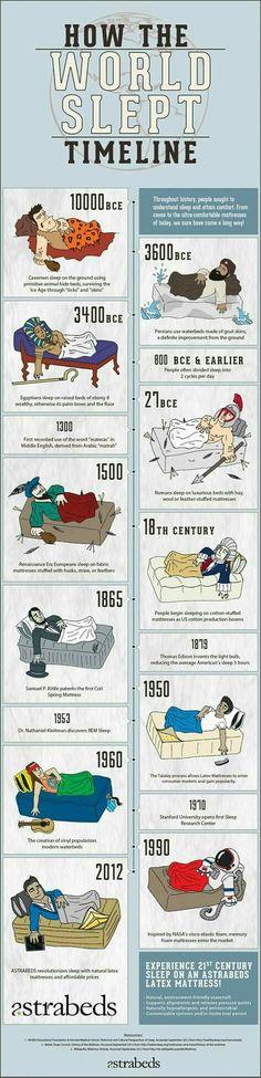 History Teachers, History Class, Teaching History, World History, Info Board, Thinking Day, History Facts, History Timeline, Interesting History