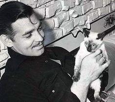 Clark Gable with a cat