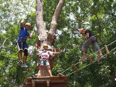 #GalaxyTourism offers #Singapore #ForestAdventure Tour Packages and Ticket 2016. Find unforgettable experience for all ages at amazing discounted rate. http://goo.gl/phqUVc