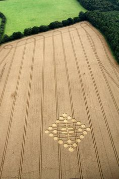 Crop Circle at Oxleaze Copse, nr Stitchcombe, Wiltshire. Reported 23rd…