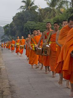 Buddhist monks and novices leave their wats to collect their morning alms - Luang Prabang, Laos
