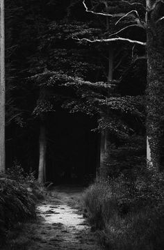 By a road dark and creepy