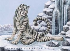 """Winter Falls - """"A Siberian Tiger sits in the snow enjoying the tranquil sounds of the waterfall."""" Art of Dark Natasha."""