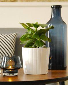 Shake My Blog | Des touches de bleu dans mon salon avec Fly