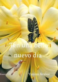 Happy Good Morning Images, Good Morning In Spanish, Good Morning Messages, Spanish Inspirational Quotes, Good Morning Inspirational Quotes, Good Night Greetings, Morning Greetings Quotes, Good Morning Flowers, Wonderful Flowers