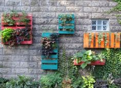 Vertical Pallet Gardens