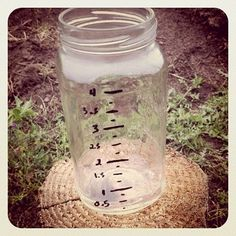 "Make a ""green"" rain gauge"