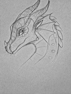 Glory- she was one of my faves dragon head drawing, fire drawing, dragon Pencil Art Drawings, Art Drawings Sketches, Animal Drawings, Cool Drawings, Drawing Stuff, Drawing Ideas, Cool Dragon Drawings, Drawing Animals, Drawing Tutorials
