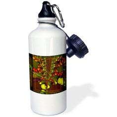 3dRose Psychedellic Splash hippie retro psychedellic flowerpower fractal yellow red blue green, Sports Water Bottle, 21oz