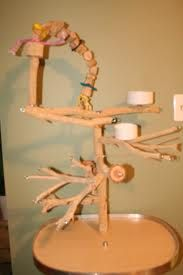 how to make a wooden parrot stand - Google Search