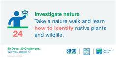 #30x30Challenge: Take a nature walk