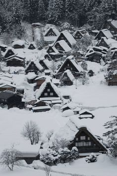 Snow in Historic Vil