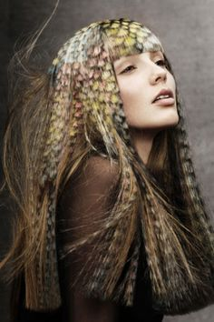 2012 British Hairdressing Awards crown top talent