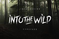 Into The Wild Typeface by pratamaydh on @creativemarket