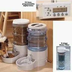 Child safe? Programmable Automatic Pet Feeder - dry food and water