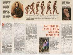 Teoría de la Evolución :: Historia Ciclo Básico