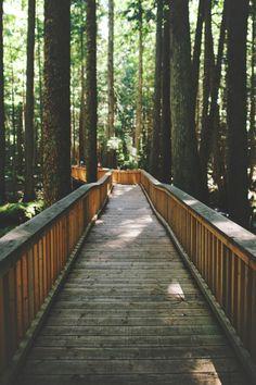 Via natureac http://natureac.tumblr.com/post/129407697273/nature-blog