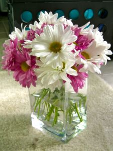 daisy centerpieces maybe blue daisies instead of pink