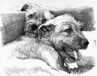 "Van Loan Studios ""Irish Wolfhound puppies"""
