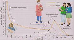 Quando uma criança se aproxima da puberdade, a glândula do cérebro, chamada hipófise, aumenta a secreção de um hormônio denominado hormônio folículo-estimulante (FSH). Este hormônio, em seguida, provoca efeitos adicionais. Nas meninas, o hormônio folículo-estimulante (FSH) ativa os ovários que começam a produzir estrogênio. Nos meninos, o hormônio folículo-estimulante (FSH), provoca a produção de esperma na região gonadal. Nos meninos, é questionável exatamente quando a puberdade está…