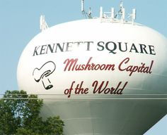 """Kennett Square is trying to steal Times Square's thunder on New Year's Eve. The Pennsylvania borough, known as the """"Mushroom Capital of the World,"""" will be lowering a giant, stainless-steel mushroom at midnight on Dec. American Festivals, Brandywine Valley, Kennett Square, Welcome Students, Small Town America, Chester County, We Are Festival, Festivals Around The World, Water Tower"""