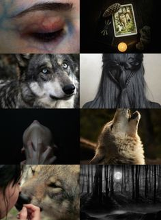 """""""You have a wolf for a friend. It's what the children say. He leads you through the forest and sleeps at your feet. He is a true friend to you. Witch Aesthetic, Aesthetic Collage, Writing Inspiration, Character Inspiration, Witch Cat, Wicca, Mythical Creatures, Teen Wolf, Aesthetic Wallpapers"""