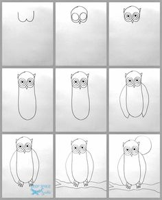 how-to-draw-an-owl 1