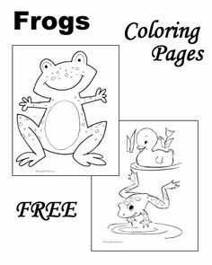Frog Coloring Pages!