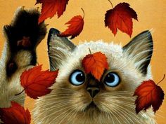 Cross Eyed Cat and FAlling Leaves Illustration funny cute cat art autumn leaves fall illustration kitty