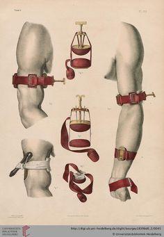 Tome 6. Pl. 20. Jean-Baptiste Marc Bourgery  (1797-1849 https://pinterest.com/pin/287386019948321810), Nicolas Henri Jacob. [Traité complet de l'anatomie de l'homme comprenant la médecine opératoire (1831-1854  https://pinterest.com/pin/287386019941966857/ )].