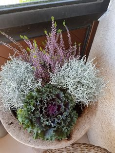 Winter Flowers, Diy Flowers, Winter Balcony, Winter Planter, Fall Decor, Flower Arrangements, Garden Design, Decoration, Floral Wreath