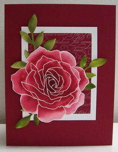 Stamping with Loll: Re-inker Spread Technique...Manhattan Rose...perhaps Stampin Up's most beautiful rose ever...Loll's technique makes gorgeous cards!!!!