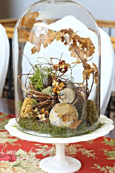 Woodsey cloche leaves bird moss Autumn fall on white pedestal - ♥ it!