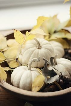 White pumpkins as shabby centerpiece, autumn inspiration Mini Pumpkins, White Pumpkins, Fall Pumpkins, Thanksgiving Decorations, Seasonal Decor, Thanksgiving Games, Holiday Decor, White Pumpkin Centerpieces, Pumpkin Leaves