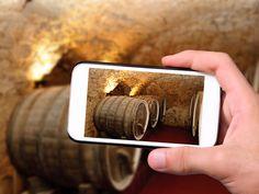 Gracias a los nuevos cursos de formación MUY podrás hacerte un experto en vinos, aprender a retocar y editar imágenes digitales ¡o ambas…