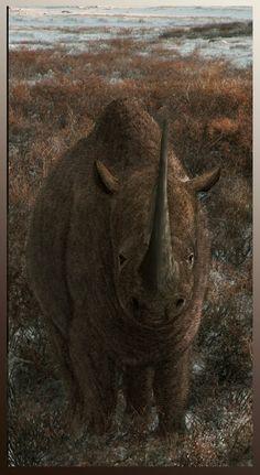 Woolly Rhino (Coelodonta antiquitatis) by Leogon