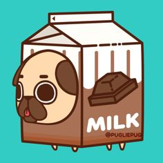 Pug in milk