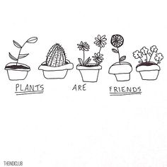 "@imagine.soul's photo: ""+ 'PLANTS ARE FRIENDS' - This is just a very simple drawing that I have seen all over instagram and tumblr! I know it's not very detailed but it's just to start off with! Please repost with credit There will be more drawings coming soon!"""