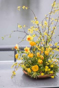 Francoise Weeks, Floral Design with forsynthia, yellow tulips, yellow ranunculus and daffodils