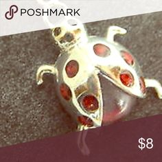 Ladybird/bug pendant/charm So cute, definitely ready to bring you good luck this garnet look sterling silver charm or necklace piece is ready to fly to you anytime! Jewelry Necklaces