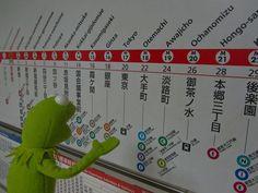 Image courtesy of Kermit on Tour