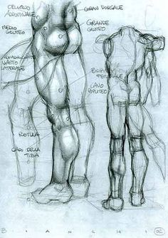 Anatomical Drawing by Simone Bianchi Anatomy Sketches, Anatomy Drawing, Guy Drawing, Life Drawing, Drawing Sketches, Painting & Drawing, Art Drawings, Leg Anatomy, Human Anatomy