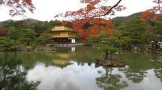 Японский город Киото занял первое место в рейтинге лучших туристических городов мира по версии журнала Travel + Leisure