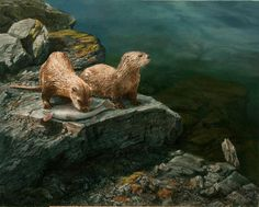 Karla Mann. Table For Two (Two River Otters)
