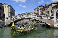 Best Photos of the Day; VENICE.- A flowery rowing boat takes part in the 41th Vogalonga on May 24, 2015 in Venice. The Vogalonga is a 30km paddling/rowing race through the city of Venice and the lagoon up to Burano. Almost all rowed or paddled boats can participate, and there's even a separate category for kayaks. AFP PHOTO / OLIVIER MORIN