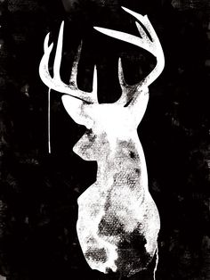 Oh Deer - Black & White -Urban Road
